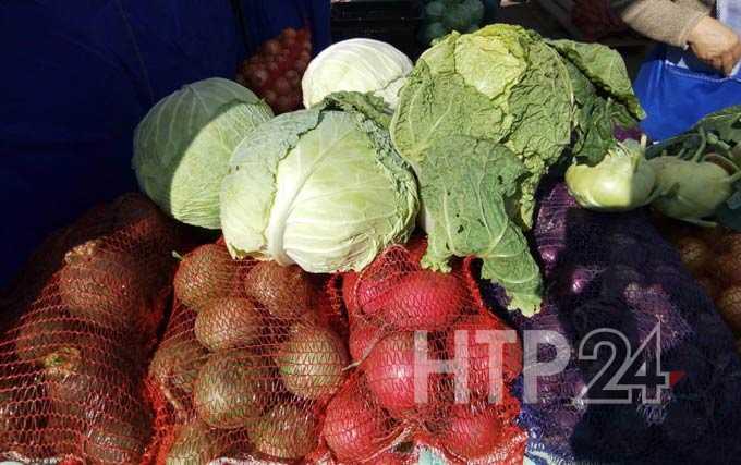 У нижнекамцев появилась возможность приобрести экологически чистые овощи и мясо по низким ценам