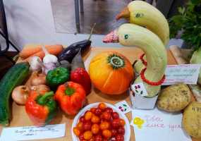 Восьмая выставка «Дары осени» прошла в Нижнекамске