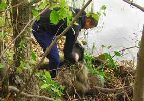 В Нижнекамске активисты вышли на очистку прибрежной территории озера Каракуль