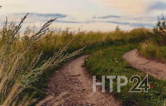 В Татарстане мужчина расправился со своей знакомой и бросил ее умирать в поле
