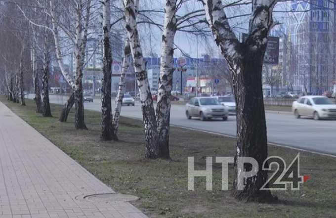 Строительство полкилометра новой дороги в Нижнекамске обойдется в 120 млн рублей