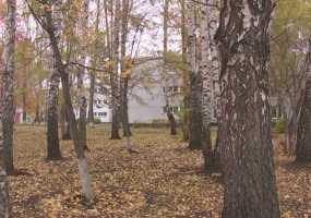 В Нижнекамске в последний день недели потеплеет