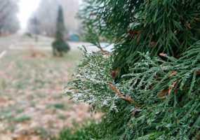 В Нижнекамск приходят настоящие зимние морозы