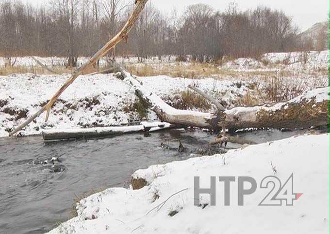 В Нижнекамске так и не назвали причины, по которой река Тунгуча побелела и покрылась пеной