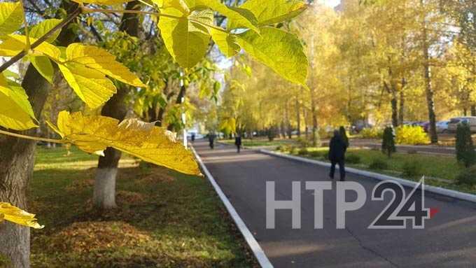 Нижнекамск вошел в число российских городов с неблагоприятной средой
