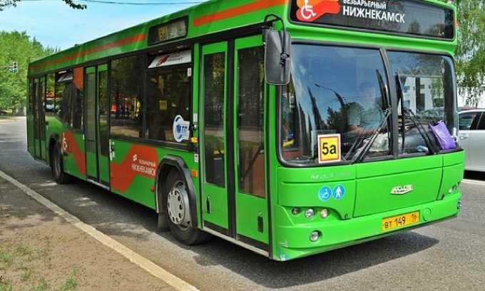 Питерские специалисты едут в Нижнекамск, чтобы решить транспортную проблему
