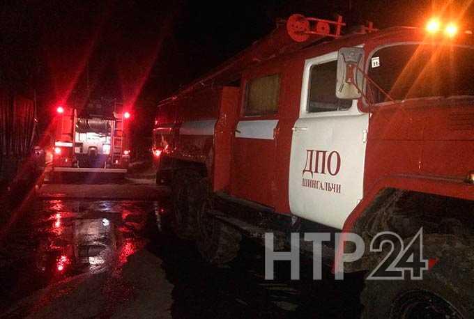 В Нижнекамском районе пожар уничтожил животных и надворные постройки