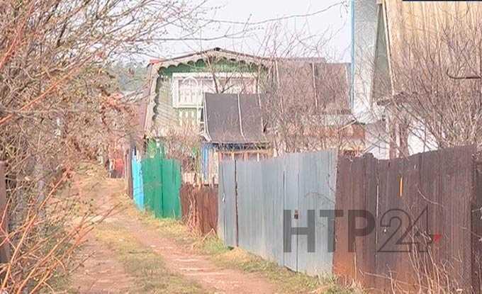 В Нижнекамске судят преступную группу, промышлявшую кражами в садах-огородах