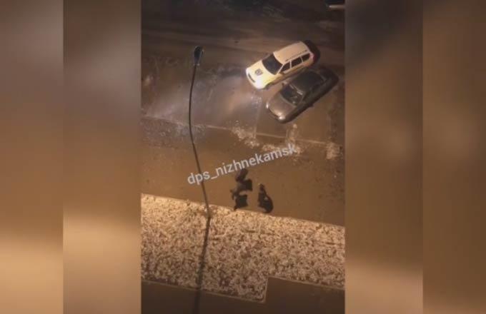 В Нижнекамске сотрудник ЧОП ударил подрезавшего машину охранников водителя по лицу