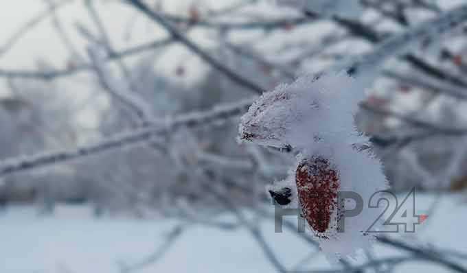 В Татарстане этой ночью сохранится морозная погода