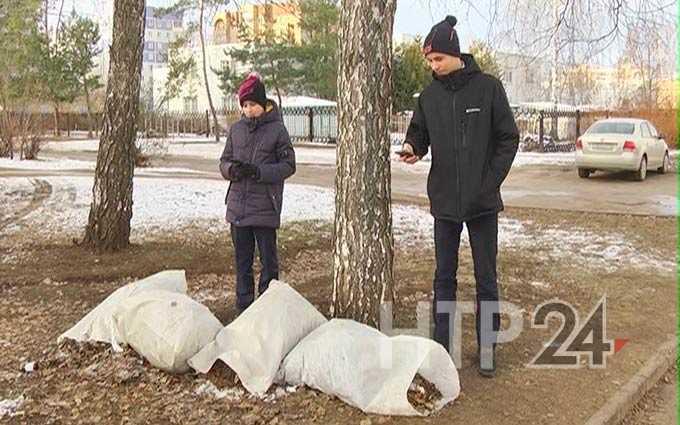 Школьники из Нижнекамска сделали более 3 тыс фотографий несанкционированных свалок