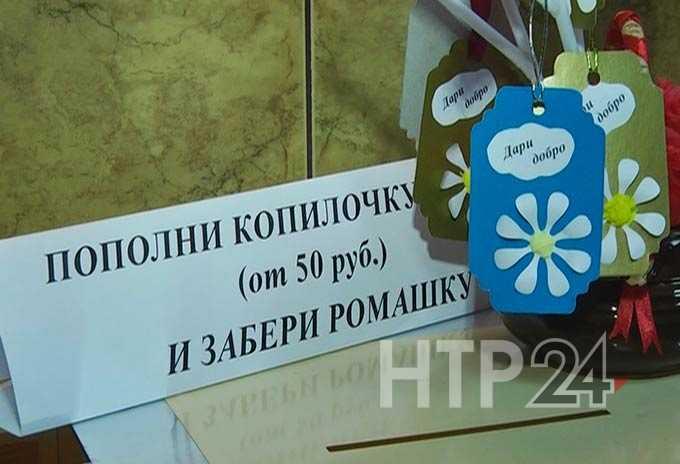 В Нижнекамске проходит акция «Добрая ромашка»: средства собираются на жалюзи для «Надежды»