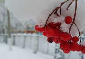 Тепло в Нижнекамске задержится ненадолго: когда ждать прихода зимы