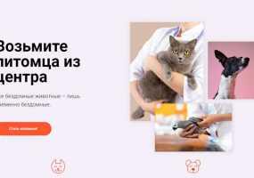 В Нижнекамске запустили сайт по поиску домашних питомцев