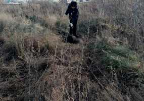 В Нижнекамске пропавший мужчина найден мертвым