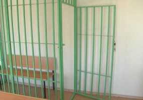 В Татарстане убийца матери получил всего 6 лет тюрьмы