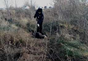Судмедэксперты назвали причину смерти жителя Нижнекамска, поиски которого велись почти две недели