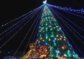 В Нижнекамске начали создавать новогоднее настроение