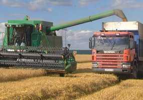 В Нижнекамском районе батыры жатвы на пятерых намолотили 14 тыс тонн зерна