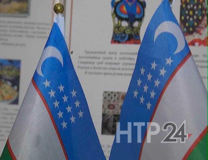 Проживающие в Нижнекамске граждане Узбекистана смогут принять участие в выборах депутатов