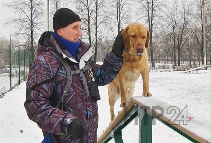 В Нижнекамске незрячий мужчина просит свозить его с собакой-поводырём на конкурс в Челны