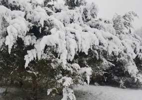 Синоптики пообещали снегопады в Татарстане и теплую погоду