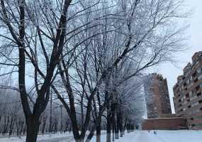В Нижнекамске диагноз «переохлаждение» медики поставили пяти местным жителям