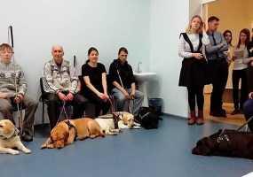 Незрячие нижнекамцы и их собаки-поводыри отметились на фестивале «Шаг за шагом: два сердца рядом»