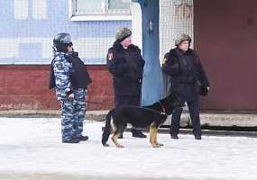 В Нижнекамске на территории жилого дома нашли две гранаты