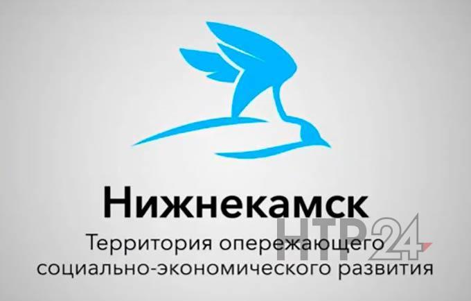 В Нижнекамске запустят уникальное для России производство