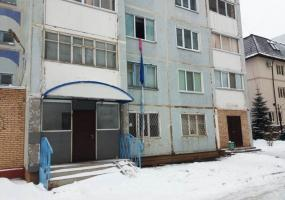 В Нижнекамске женщина выпала из окна