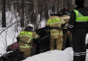 В Нижнекамском районе автомобиль вылетел в кювет и врезался в дерево