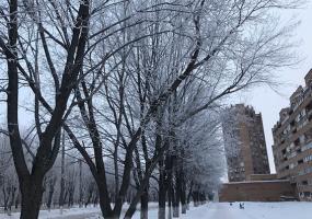 В ближайшие часы синоптики обещают татарстанцам похолодание до -26 градусов