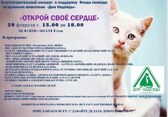 В Нижнекамске состоится концерт в поддержку бездомных животных