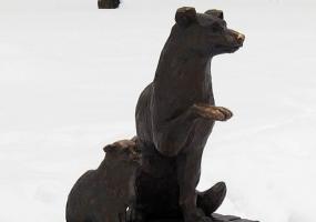 В Нижнекамске могут начать бесплатно стерилизовать животных