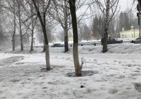 Синоптики рассказали, какая погода будет в марте