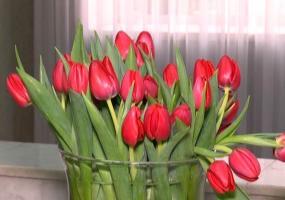 Март в Татарстане обещает быть тёплым