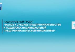 530 предпринимателей в Татарстане, ориентированных на зарубежные рынки, получили поддержку
