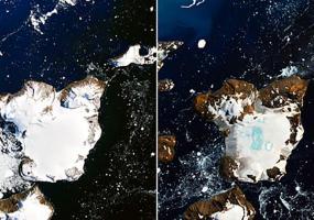 Почти четверть снега растаяла в Антарктиде