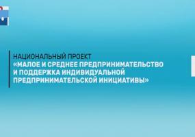 «Малое и среднее предпринимательство и поддержка индивидуальной предпринимательской инициативы»