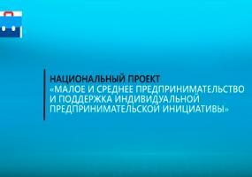 С помощью сервиса ФАСТТРЕК.РФ более 4,5 татарстанских бизнесменовполучили госпомощь