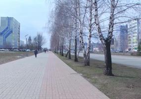 Яндекс оценил уровень самоизоляции в Нижнекамске