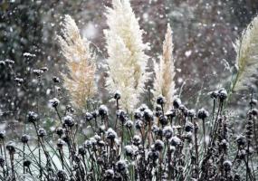 В Татарстане 1 апреля выпадет снег