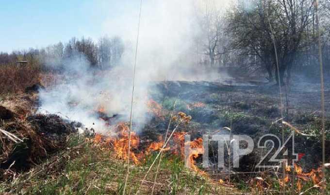 В Нижнекамске с 10 апреля начнёт действовать особый противопожарный режим