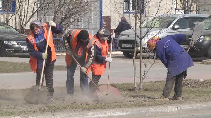 В Нижнекамске отказались от побелки бордюров и деревьев