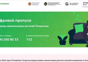 В Татарстане объяснили, почему в первый день работы сервис по выдаче SMS-пропусков дал сбой